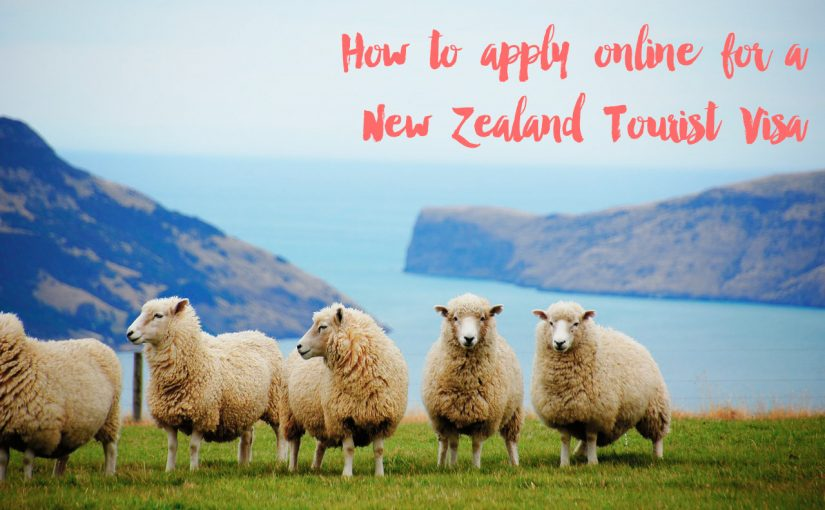 How to Apply for a New Zealand Tourist Visa Online
